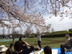 2016花見2