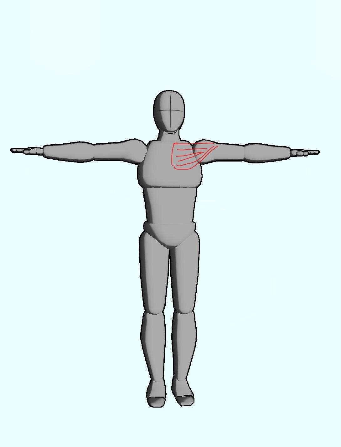 整体ストレッチ 大胸筋2