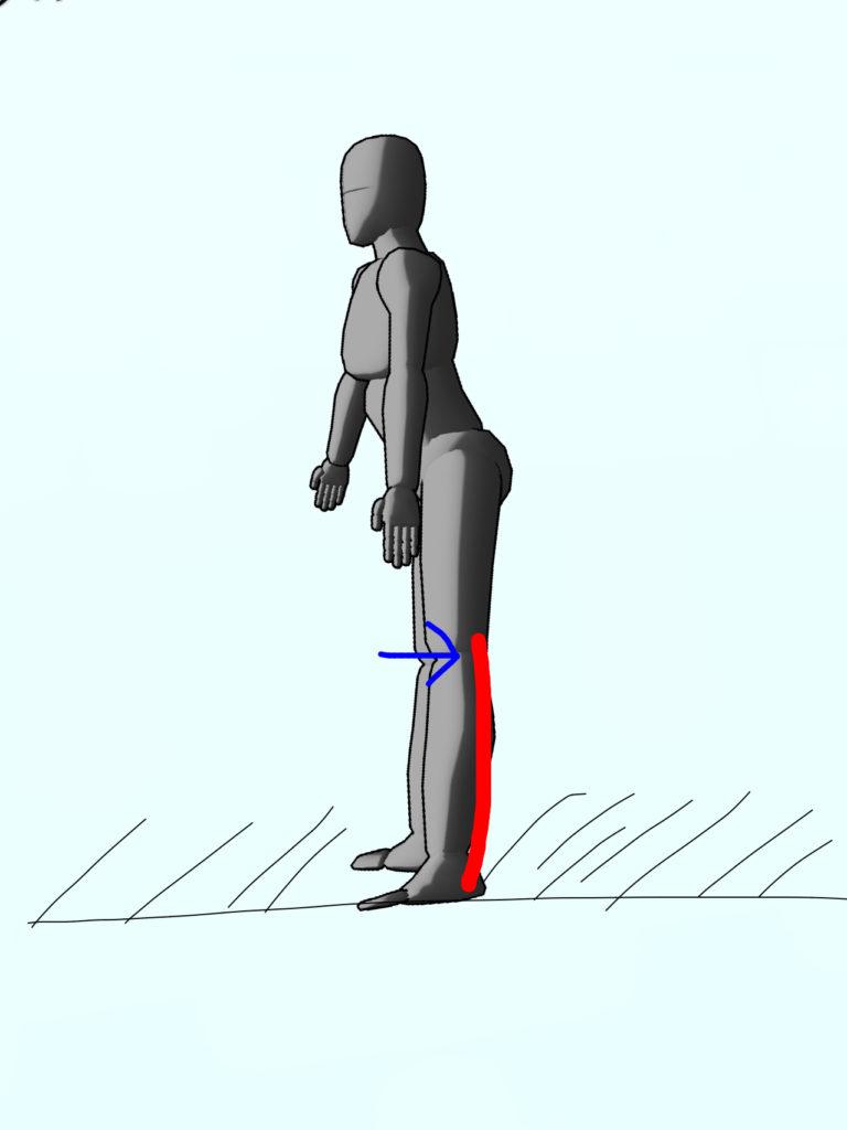 整体ストレッチ 下腿三頭筋3