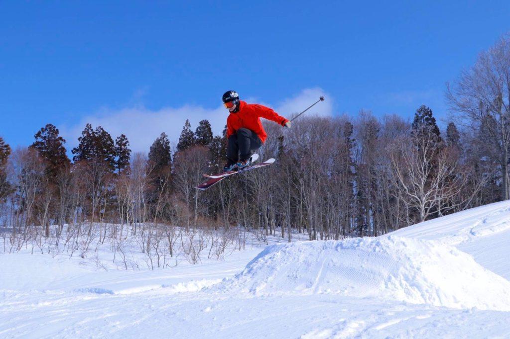 整体 スキー