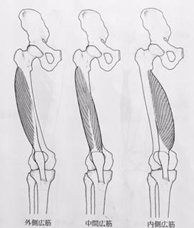 整体ストレッチ 大腿四頭筋6